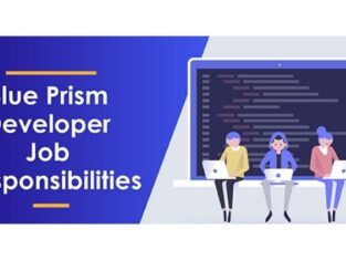 Blue Prism - Roles and Responsibilities of a Developer